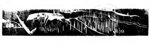 Buddeberg , Kirsten KS 322 1960 Lippstadt, Stud. Dortmund, Münster, o.T. Grafik, Holzschnitt 8/1992 43,5x59,5 45x60 weißes Lineament auf schwarzem Grund, Darst. 5,5x30cm Ppta. 11,5x36cm A, Landschaft